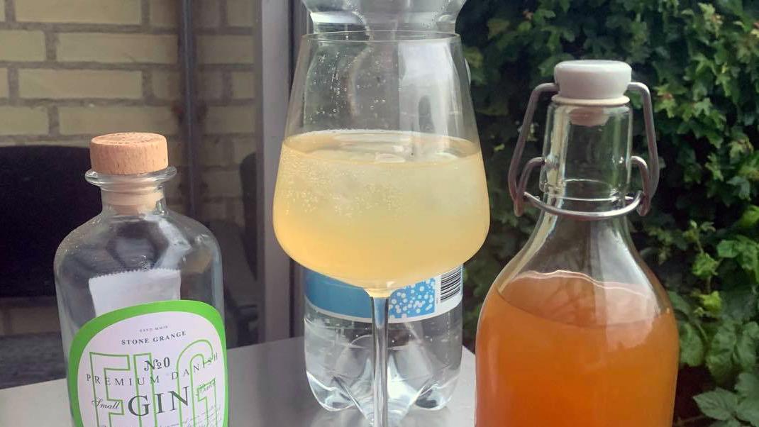 Madentusiasten: Hjemmelavet tonic! Er det virkelig så let?