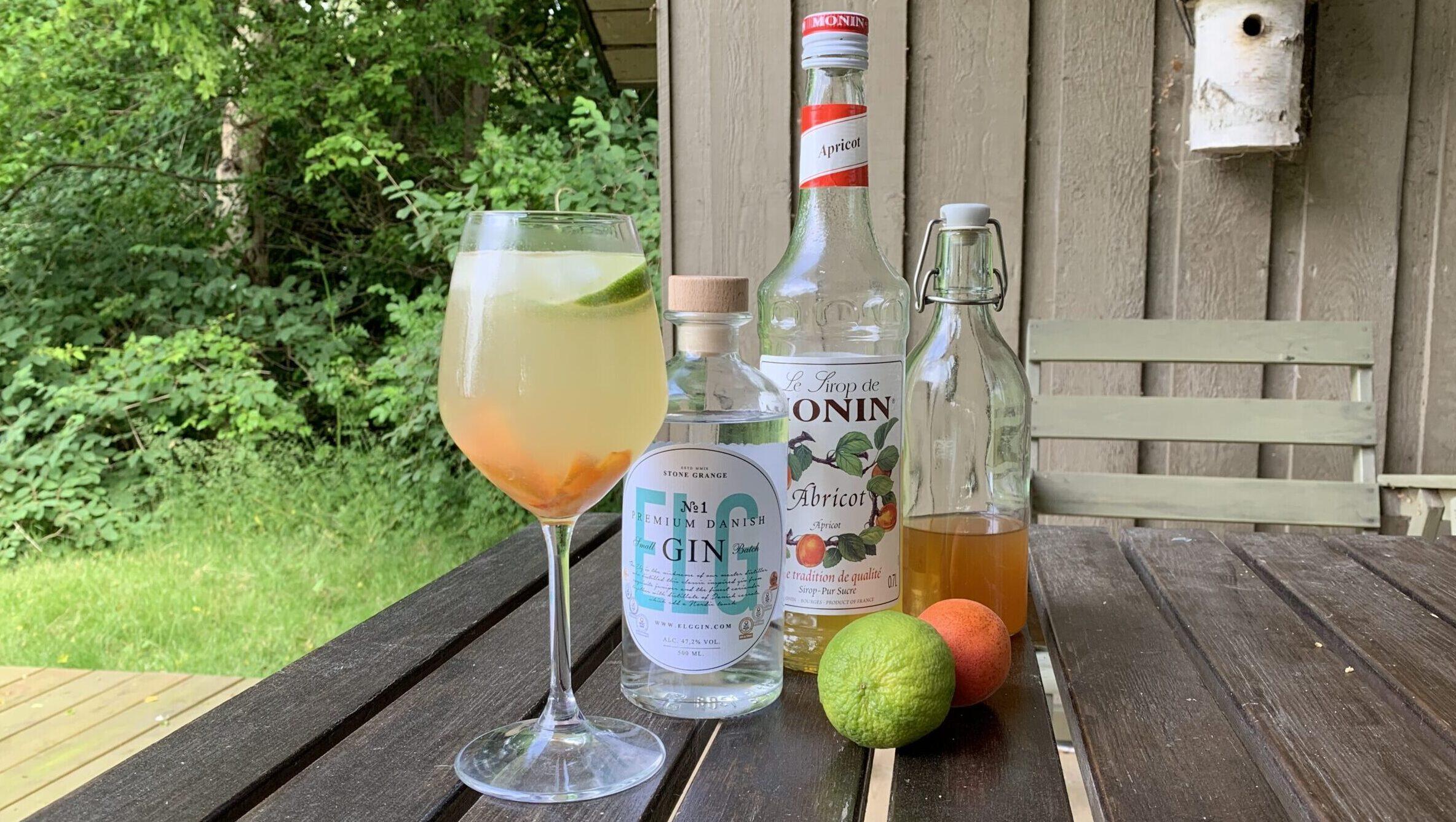 Hvordan drikkes gin?